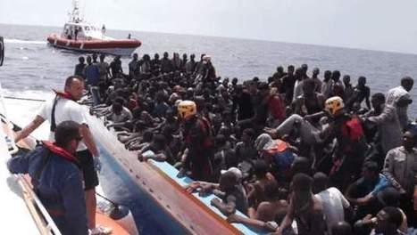 Libië vangt vluchtelingen op in dierentuin   Vluchtelingen en Asielzoekers in Europa   Scoop.it