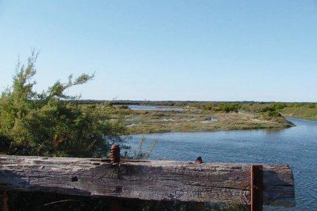 Entre terre et mer, un lieu préservé - SudOuest.fr | Le Bassin d'Arcachon | Scoop.it