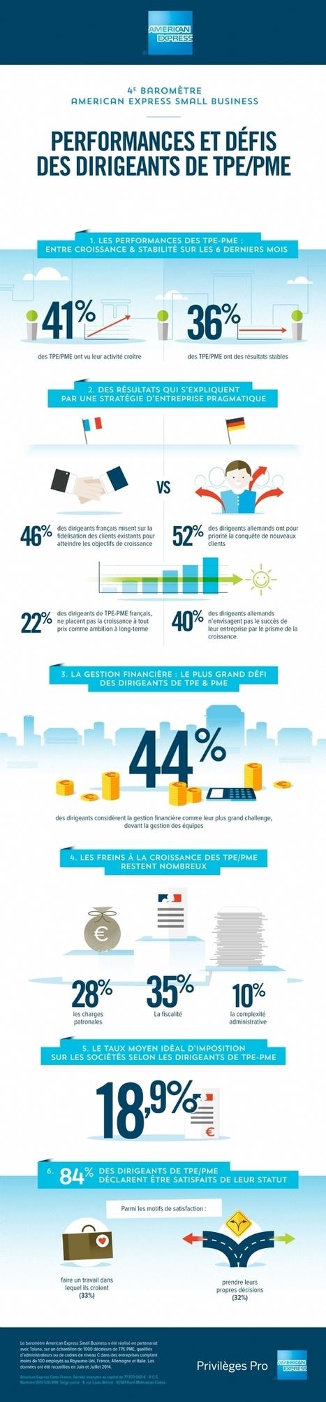 La fiscalité, frein n°1 à la croissance des TPE-PME en France - American Express | Infographies divers et variées.... | Scoop.it