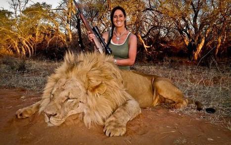 Livid Twitter Users Wish Death On Smiling Lion Killer   Tourisme et chasse   Scoop.it