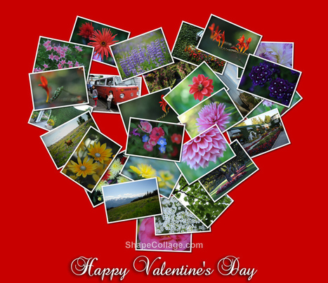 Heart Shaped Photo Collage For Valentine's Day | Smartpress.com | Photography, Graphic Design & Artful Inspiration | Scoop.it