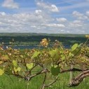 April Around the Finger Lakes Region | Luxury Vacation Rental Homes in the Finger Lakes | Scoop.it