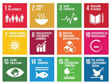 ¿Cómo pueden contribuir las soluciones digitales a los ODS? | Ergonomía | Scoop.it