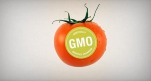 GMO Labeling Proposition 37: The Final Score - Organic Connections   Searching for Safe Foods   Scoop.it