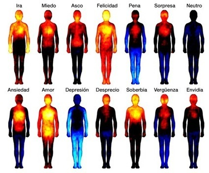 Estas son las partes del cuerpo en las que se sienten las emociones | Microsiervos (Ciencia) | Biologia | Scoop.it