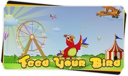 UTradeStudios » Feed Your Bird | Feed Your Bird | Scoop.it