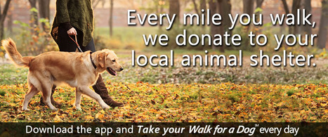 WoofTrax: Dog Powered Fundraising | Take your Walk for a dog | Walk your dog and benefit Animal Shelters | All Things Dog | Scoop.it