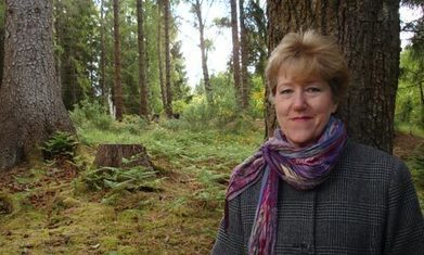 Linda Gillard on self-publishing: 'I market myself, not a genre' - The Guardian | Online Fiction Marketplace | Scoop.it