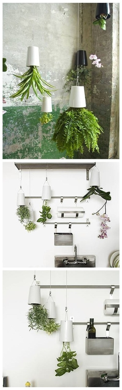 "Perfect Gardening Design Idea ""Upside Down Planter""   Green In ...   Gardening   Scoop.it"