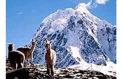 Les bergers d'Ausangate et leur univers religieux | Maison Amérique Latine | Patrimonio vivo de los Andes | Scoop.it