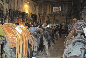 Cowboy Up! It's the National Day of the Cowboy.   Horse and Rider Awareness   Scoop.it