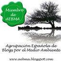 El #Informe del estado de los #ríos en #Cantabria 2013 / #EducaciónAmbiental   rios de cantabria   Scoop.it