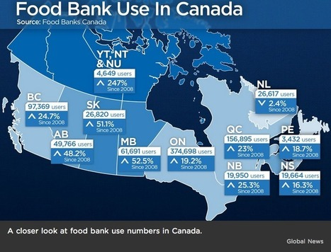 Infographic: Changes in Food Bank Use in Canada | The Homeless Hub | NWT News | Scoop.it