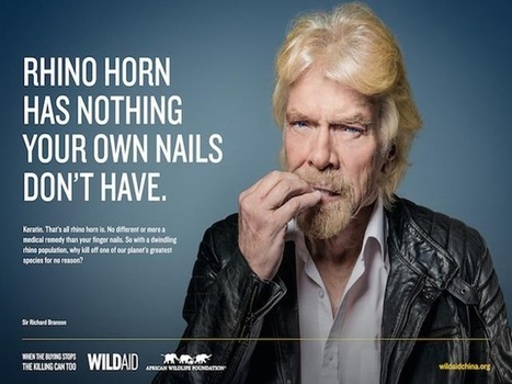 PICS: Richard Branson offers rhino poachers his finger nails | What's Happening to Africa's Rhino? | Scoop.it