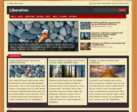 40 Excellent 3 Column WordPress Themes For Free Download ...