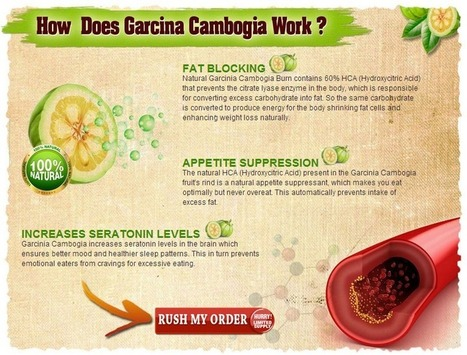 Interested in Original Garcinia Cambogia? - Don't BUY! before try read this first!!! | WHAT KIND OF  Original Garcinia Cambogia | Scoop.it