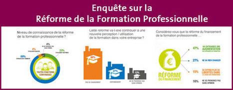 Enquête sur la réforme de la Formation Professionnelle - Nouveautés - Actualités | Numérique & pédagogie | Scoop.it
