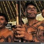 Construction des routes amazoniennes: et massacres d'Amérindiens au temps des militaires | Une Saison en Guyane | Gaia news | Scoop.it