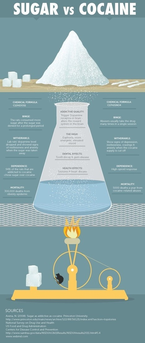 Visualistan: Sugar Vs Cocaine [Infographic] | Latest Infographics | Scoop.it