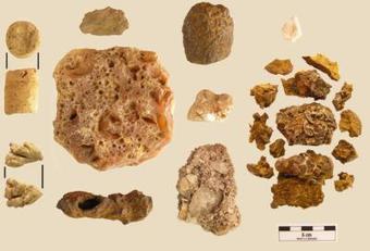 Des pierres Chamanes datant de 4000 ans découvertes au Panama ... | L'actu culturelle | Scoop.it