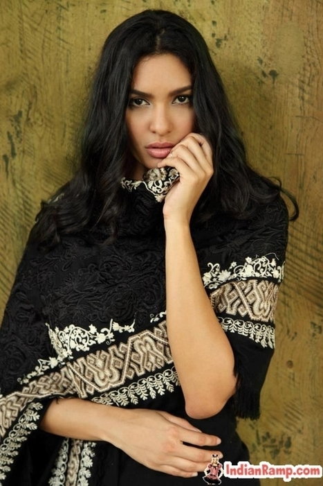 Winter Embroidered Shawls 2013 Collection , Latest Pashmina Shawls | Indian Ramp | Indian Fashion Updates | Scoop.it