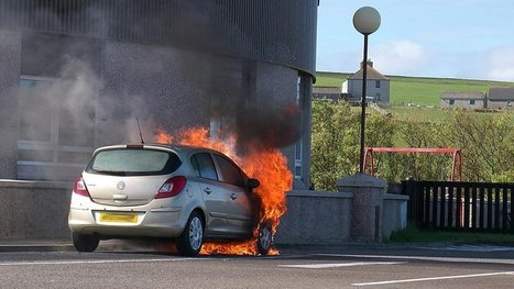 Car fires sparked by nesting birds | Quite Interesting News | Scoop.it