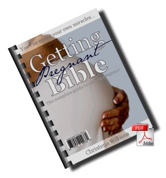 Getting Pregnant Bible | Babies And Getting Pregnant | Scoop.it