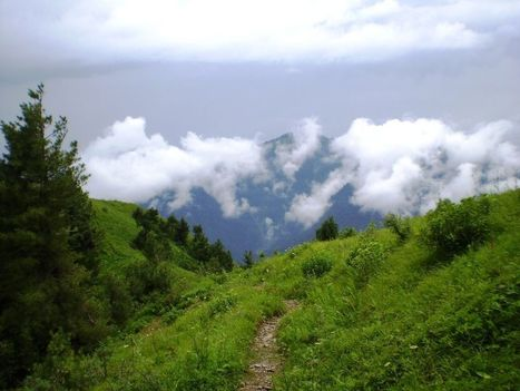 The Hilly Area of Thandiani – Pakistan | World for Travel | Pakistan Needs More Trees | Scoop.it