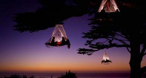 Romantic night | Facts Village | Funny Pics Online | Scoop.it