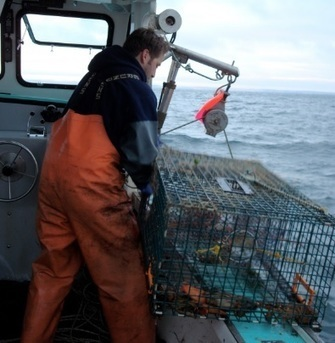 Canada Changes Federal Employment Insurance Regs that Should Help Self-Employed Fishermen | Nova Scotia Fishing | Scoop.it