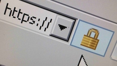 Shell Shock: Bash bug labelled largest ever to hit the internet | Insurance | Scoop.it