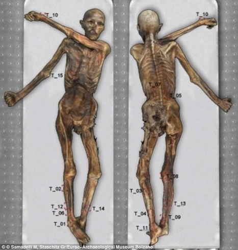 Scans reveal previously unseen tattoos Ötzi the iceman ribcage | Acupuncture News | Scoop.it
