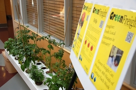 NEAT hydroponics on display at Cultural Centre - Energeticcity.ca | aeroponics | Scoop.it