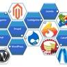 Web Development & eCommerce Solutions