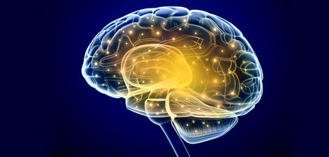Study unites neuroscience and psychology to paint more complete picture of sleep and memory | Coaching & Neuroscience | Scoop.it