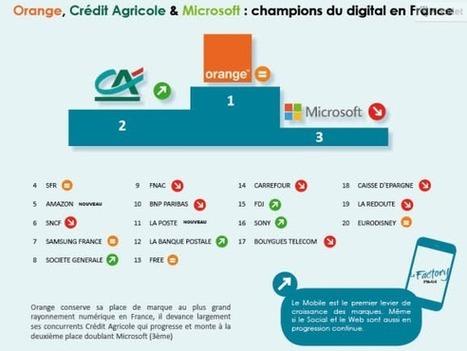 Le rayonnement numérique des 100 plus grandes marques françaises [Infographie] | Digital | Scoop.it