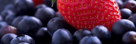 Des fraises et des myrtilles contre l'infarctus | Nutrition, Santé & Action | Scoop.it