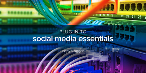 The 7 Essential Elements of Effective Social Media Marketing - Copyblogger   Letitia's Foodie Nation   Scoop.it