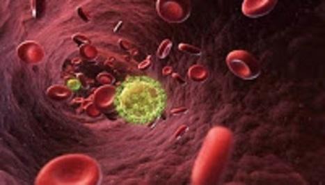 19 τρόποι δολοφονίας μας με… καρκίνο! - Δείτε πως ξαπλώνεται η θανατηφόρα επιδημία | ΜΕΤΑ - ΤΕΧΝΟΛΟΓΙΑ | Scoop.it
