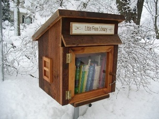 In Pursuit of Andrew Carnegie, One Little Free Library at a Time | Public Library Circulation | Scoop.it
