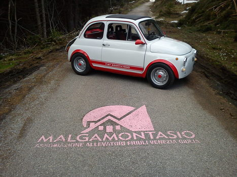 MALGA MONTASIO, DOPO IL GIRO D'ITALIA DI CICLISMO ANCHE QUELLO DEL FRIULI IN FIAT 500 « Fiat 500 alla conquista del Friuli – Il blog | Fiat 500 | Scoop.it