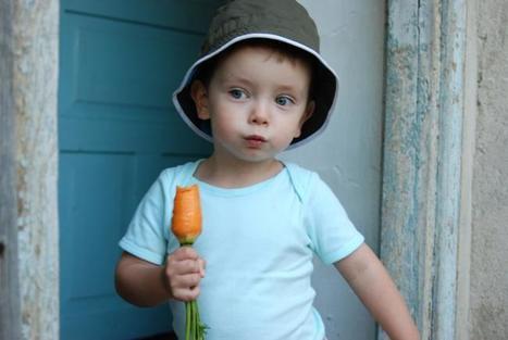 Alimentos para una buena salud visual en los niños | Antropología de la alimentación | Scoop.it