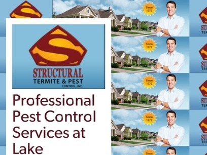 Professional Pest Control Services at Lake Arrowhead | Pest Control Services | Scoop.it