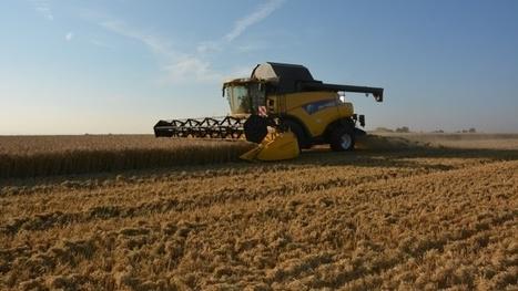 Exportations mondiales de blé - Un marché de 20 millions de tonnes hors de portée de la France | MED-Amin | Scoop.it