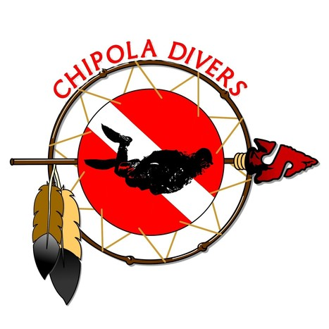 Scuba Diving in Florida with CHIPOLA DIVERS - Divers' Reviews   Dive Operators around the World   Scoop.it