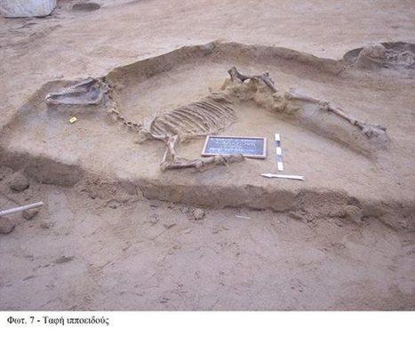 tovima.gr - Καλά διατηρημένη ταφή αλόγου στην περιοχή του Φαληρικού Δέλτα   Περί Ιστορίας   Scoop.it