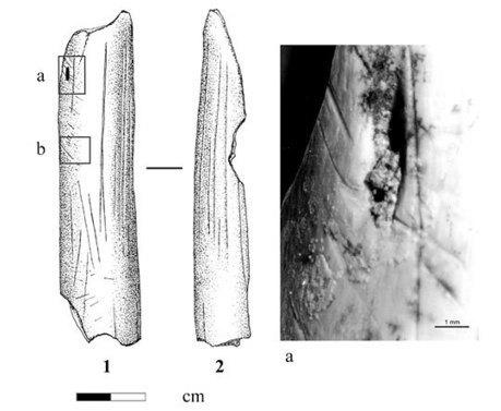 Comportements humains au Lazaret il y a 160 000 ans | Aux origines | Scoop.it