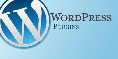 TOP 50 des plugins Wordpress les plus attaqués ces derniers jours | Au fil du Web | Scoop.it