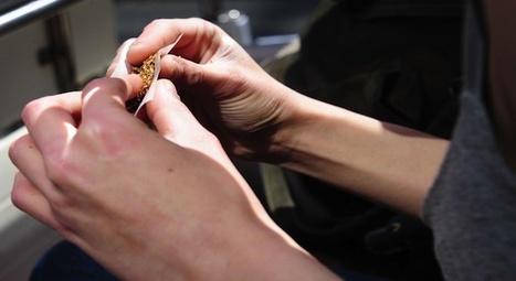 Alcool, cannabis : les étudiants cumulent les addictions - Le Nouvel Observateur | Poppers | Scoop.it