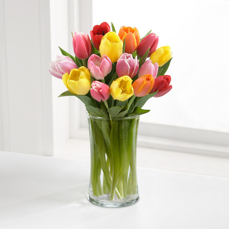 SPECIAL FLOWERS FOR VALENTINE'S DAY | Online Information | Scoop.it